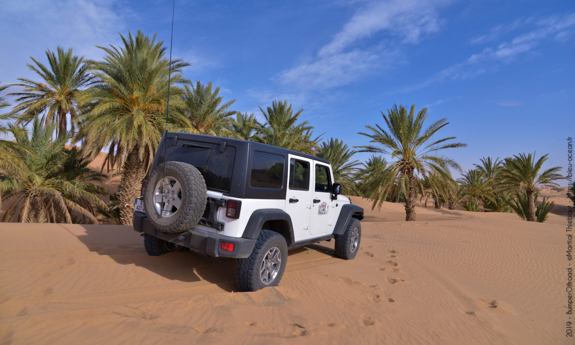 Rent a Jeep